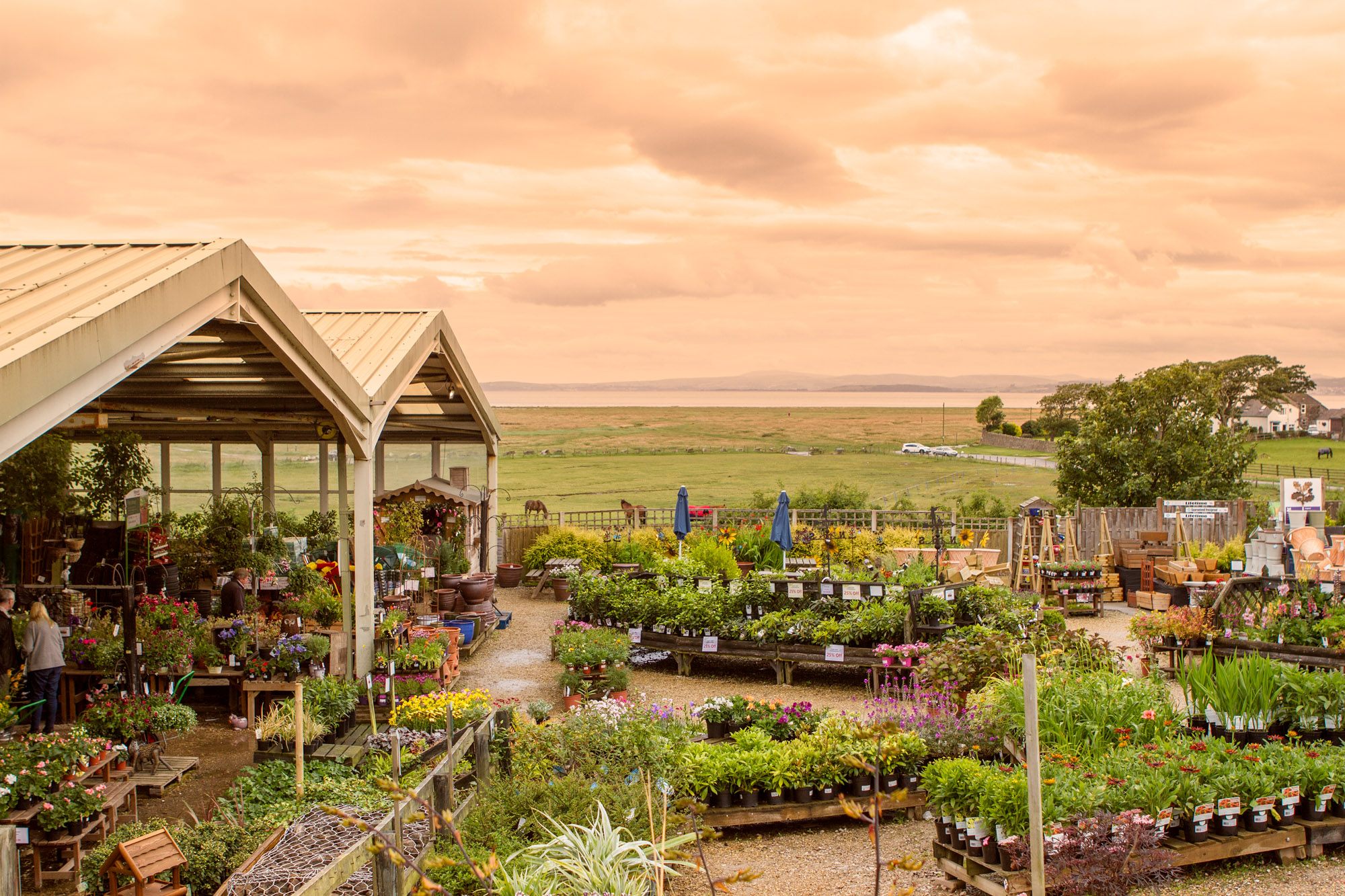 Bay View Garden Centre Potting Shed Cafe