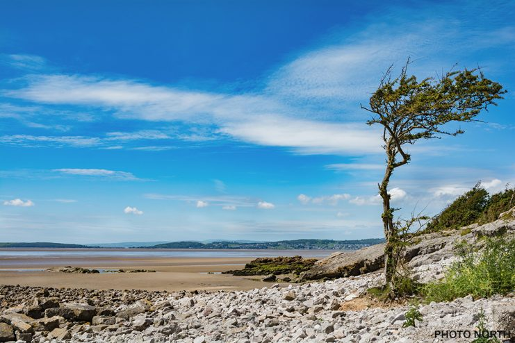 Stock photo - Sands at Jenny Brown's Point, Silverdale, Lancashire, England, UK.